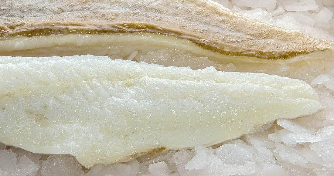 bacalao pescado de OISI