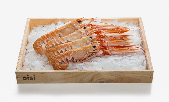 Norway lobsters OISI
